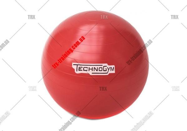 М'яч для фітнесу (фітбол) Technogym 65/75 см