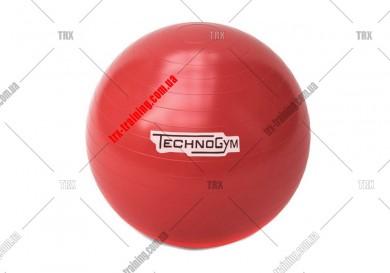 Мяч для фитнеса (фитбол) Technogym 65/75 см